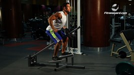 T-Bar Bent Over Row - Wide Grip