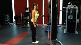 Triceps Pushdown - V Bar Attachment