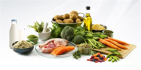 Anemia and best foods to prevent and correct it