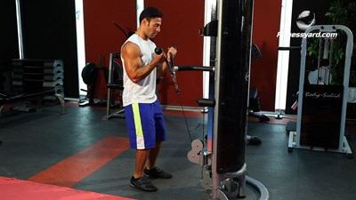 Biceps Rope-Cable Curl