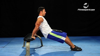 Weighted Seated Dips