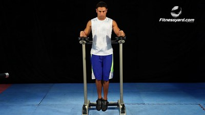 Vertical Straight Leg Raise - Parallel Bars